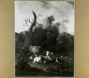 Bosrijk landschap met vee