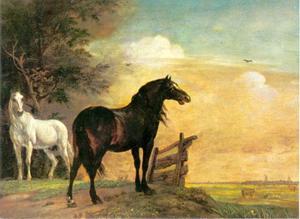 Twee paarden in de weide bij een hek