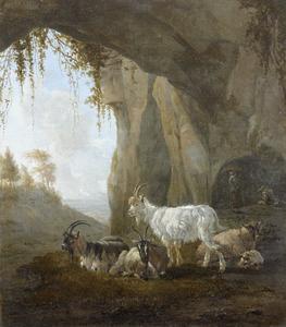 Een troepje geiten met een bok in een grot