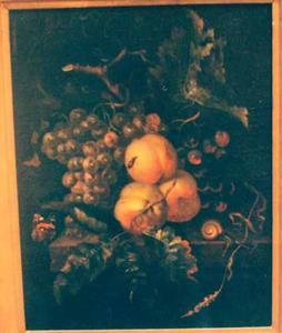 Stilleven van vruchten, met insecten en vlinders, op een stenen tafel