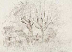 Sketch of two willows with buildings at left