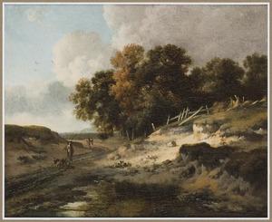 Duinlandschap met wandelaars op een landweg