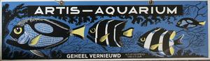 Artis-Aquarium-Tram-Affiche: 'Geheel vernieuwd'