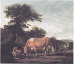 Landschap met grazend vee