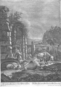 Landelijke scène met grazend vee
