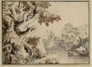 Bomen op de rotsen langs een oever