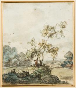 Heuvelachtig landschap met herder