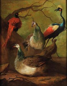 Twee pauwen, een kraanvogel, een fazant  en een patrijs in een landschap
