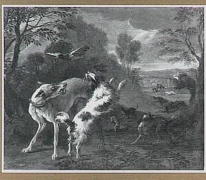 Eendenjacht in heuvelachtig boslandschap