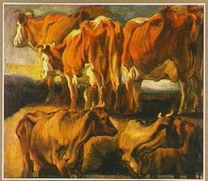 Vijf studies van koeien