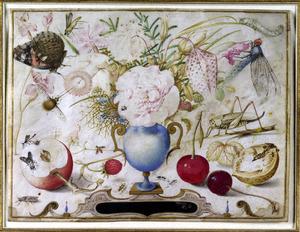 Vaas met bloemen omringd door vruchten en insecten