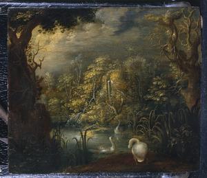 Boslandschap met zwanen