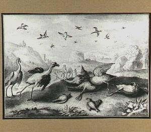 Heuvellandschap met vogels na een vogelgevecht