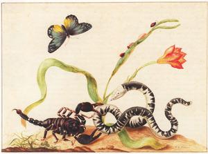 Zuid-oost Aziatische schorpioen, slang, aziatische vlinder en daglelie