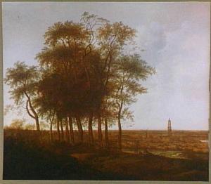 Landschap met in de verte de Cuneratoren van Rhenen