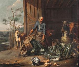 Stalinterieur met oude man die kruiwagen met groente leegkiept