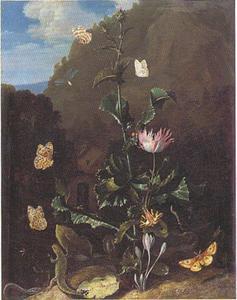 Een distel, bloemen, reptielen en vlinders in een berglandschap