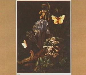 Bloeiende iris en kamperfoelie, twee vlinders en een hagedis op een mosgrond