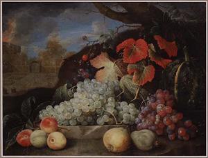 Stilleven met vruchten in een tuin