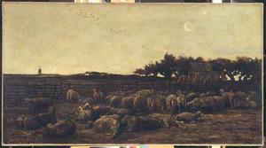 Le parc à moutons