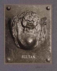 Foto van de plaquette van de orang oetan Sultan door Piet Böhncke