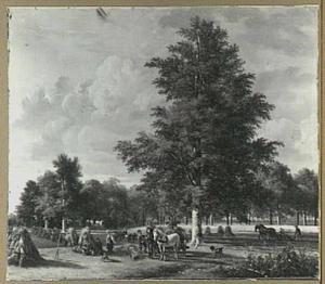 Landschap in de oogsttijd