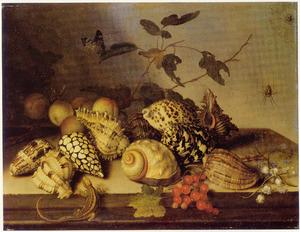 Stilleven van schelpen, vruchten, bloemen en een hagedis op een stenen plint
