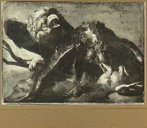 Twee adelaars