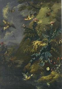 Stilleven met goudkleurig wormkruid, vogels en vlinders