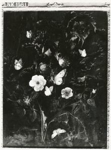 Bosstilleven met bloemen en vlinders