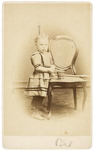 Portret van Petrus Hofstede de Groot (1870-1849)