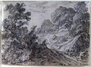 Bebost landschap met een man op een zandpad