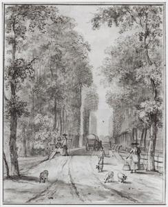 Zicht op een laan met hoge geschoren bomen, in de omgeving van Driebergen?