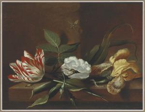 Tulp, witte roos en bonte lis met insecten op een houten tafel