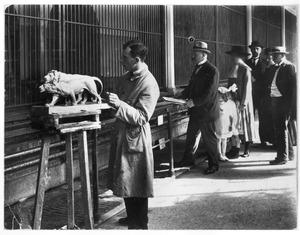 Jaap Kaas werkend aan zijn 'Leeuw en Leeuwin'  in de dierentuin, ca. 1919