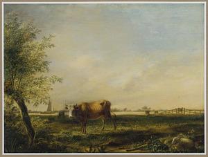 Landschap met op de voorgrond een koe