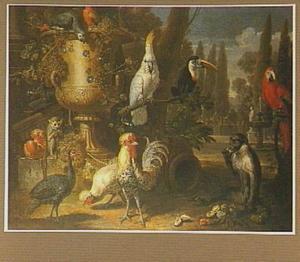 Kippen, papegaaien, toekan en twee aapjes in een park