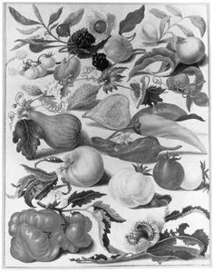 Groente- en fruitsoorten