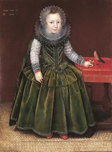 Portret van een twee-jarige jongen