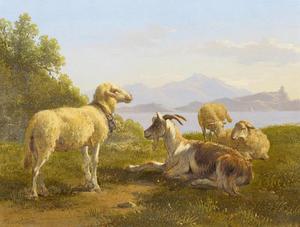 Geit en schapen in een landschap