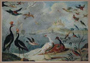 Vogels bij een exotische haven
