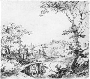 Landschap met houten brug