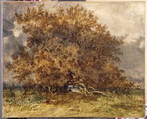 De kromme boom bij het Carrefour de l' Epine