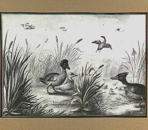 Heuvellandschap met vogels in en bij een beek