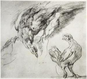 studie van een pauw en een kip
