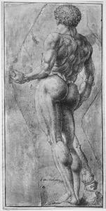 Hercules Boarium