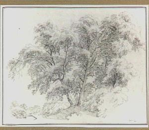 Landschap met loofbomen in de omgeving van Terni