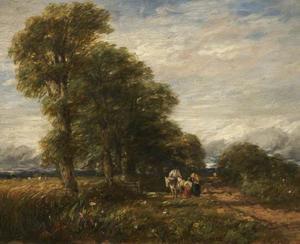 Landweg bij Rowley Regis