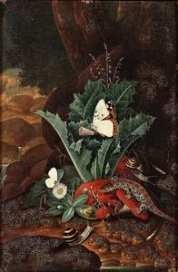 Bosstilleven met hagedis, slakken en vlinders
