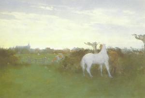Noppende paarden